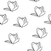 magnolia-732332__180